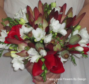 leuc freesia and tulip bouquet_bg